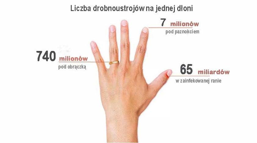Na naszych dłoniach znajdują się miliardy drobnoustrojów, a niektóre partie rąk trudno jest dokładnie umyć.